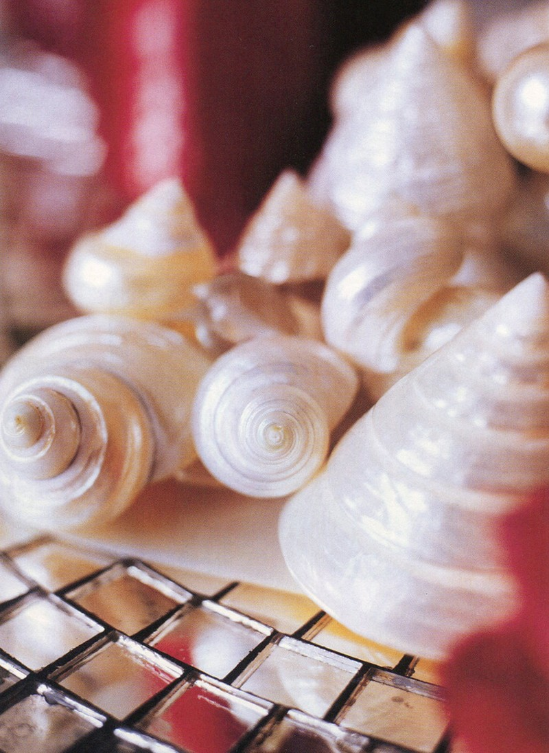 living-etc-shells.  Styling Rebecca de Boehmler