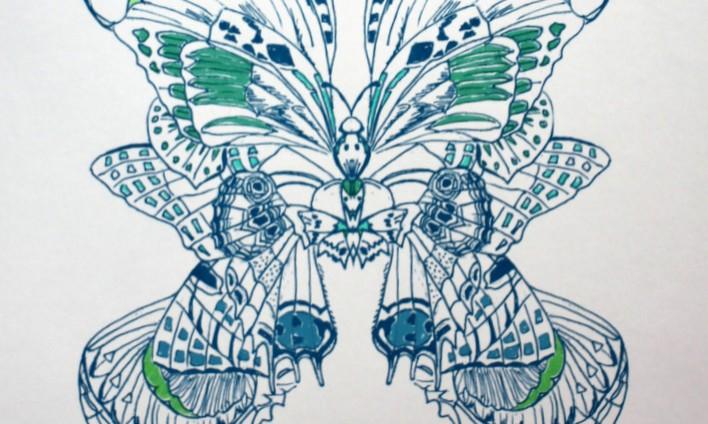 Butterflies – Blue and green plain