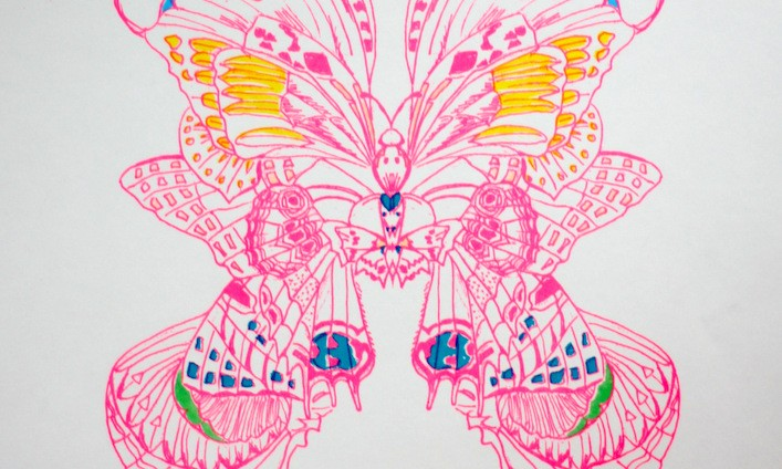 Butterfly prints. 1 blue and pink